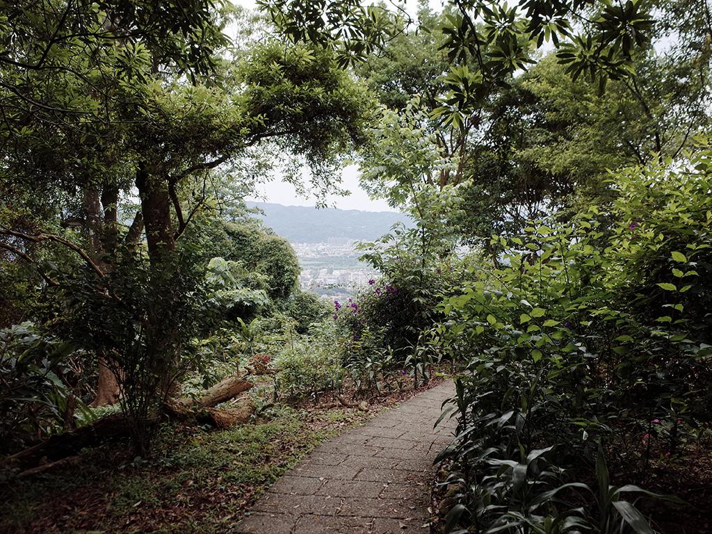 2019-05-05桐花公園-火焰山102.jpg