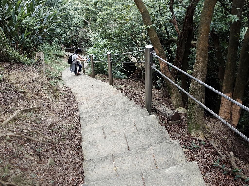 2019-05-05桐花公園-火焰山111.jpg