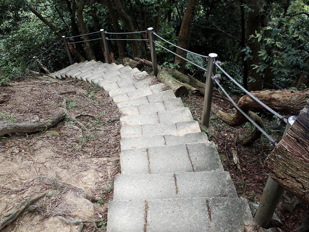 2019-05-05桐花公園-火焰山110.jpg