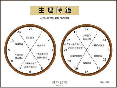 生理時鐘五臟六腑作息時間表