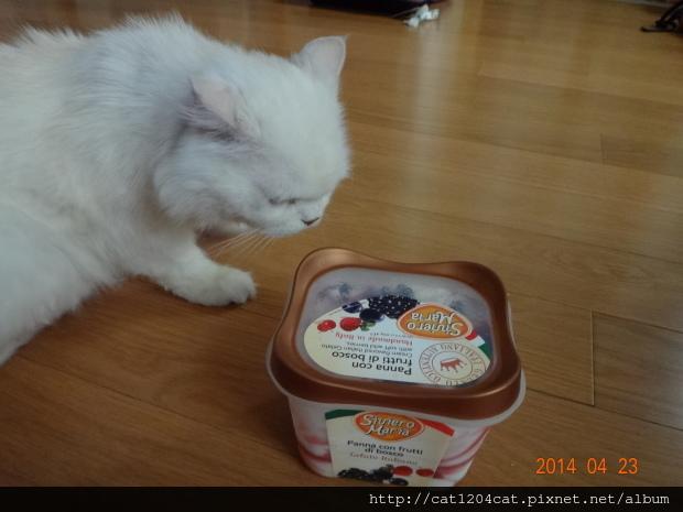 義大利冰淇淋-莓果8.JPG