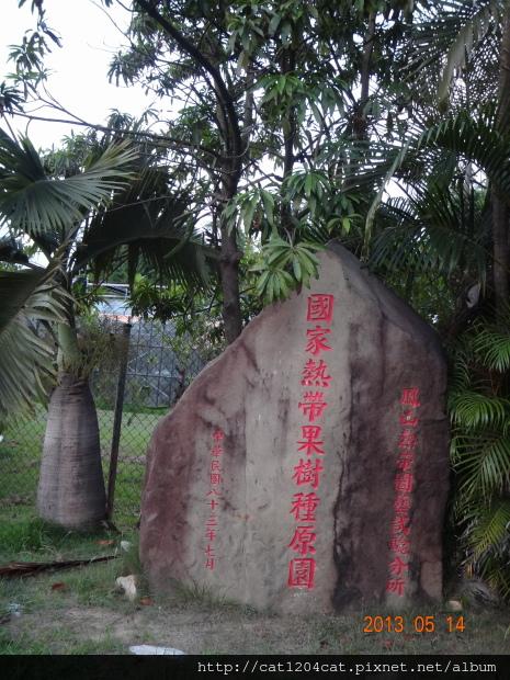 鳳山熱帶園藝4.JPG