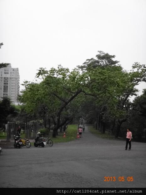 鳳山熱帶園藝14.JPG