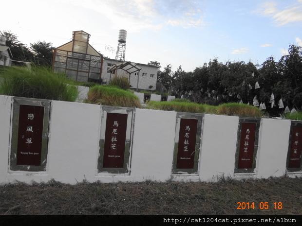 鳳山熱帶園藝3-1.JPG