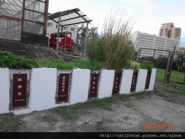 鳳山熱帶園藝3-4.JPG