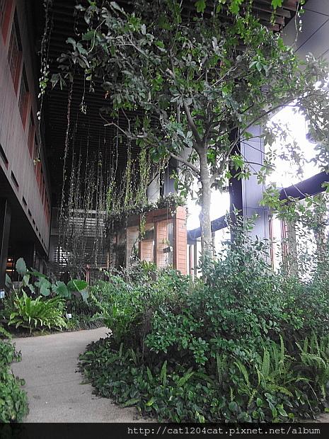 空中花園3.JPG
