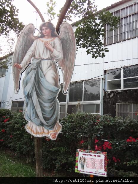天使之翼4.JPG
