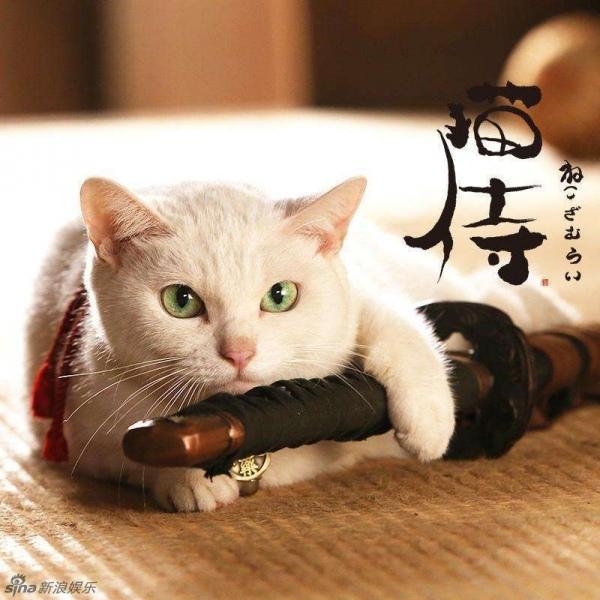 貓侍1-1.jpg