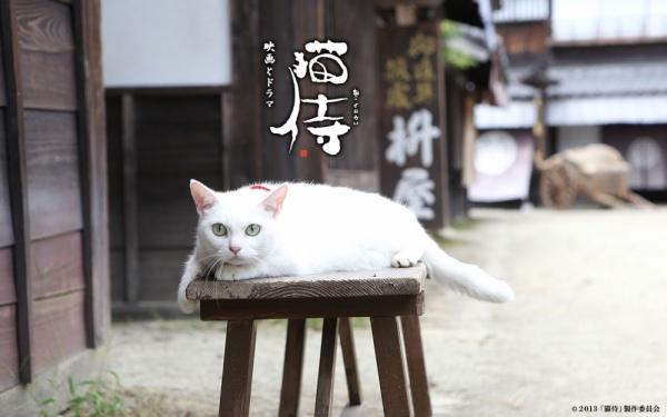 貓侍1-2.jpg