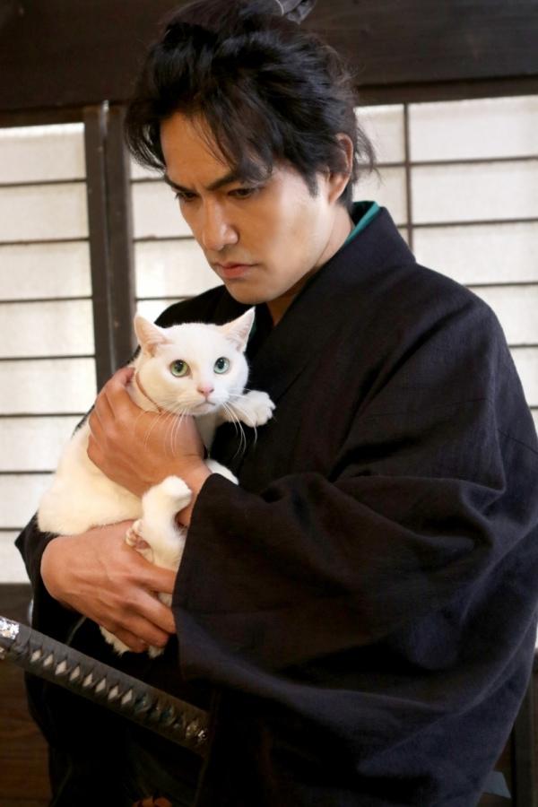 貓侍2-1.jpg