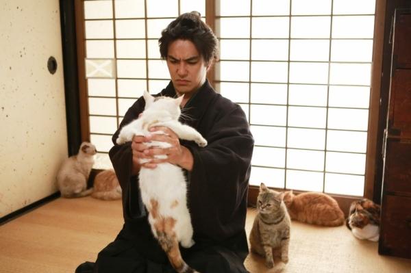 貓侍2-9.jpg