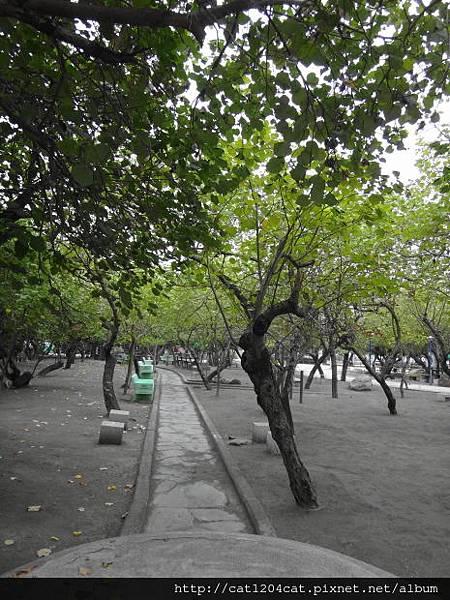 鎮海公園3.JPG