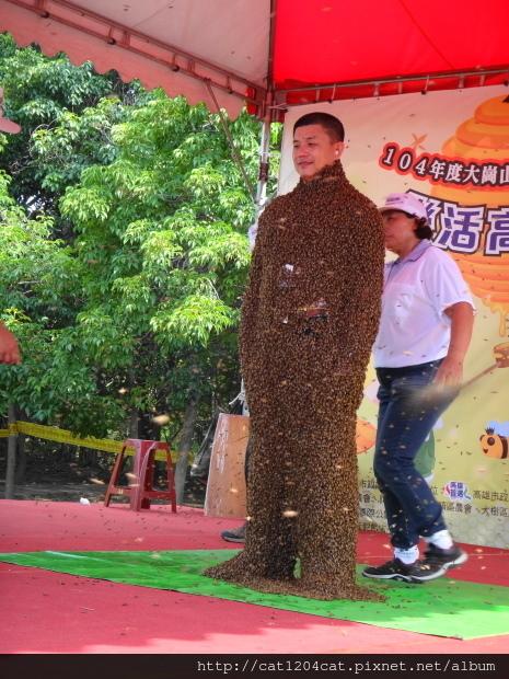 大崗山龍眼蜂蜜文化節16.JPG