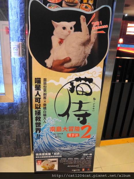 和民+貓侍1.JPG