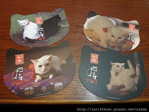 和民+貓侍4.JPG