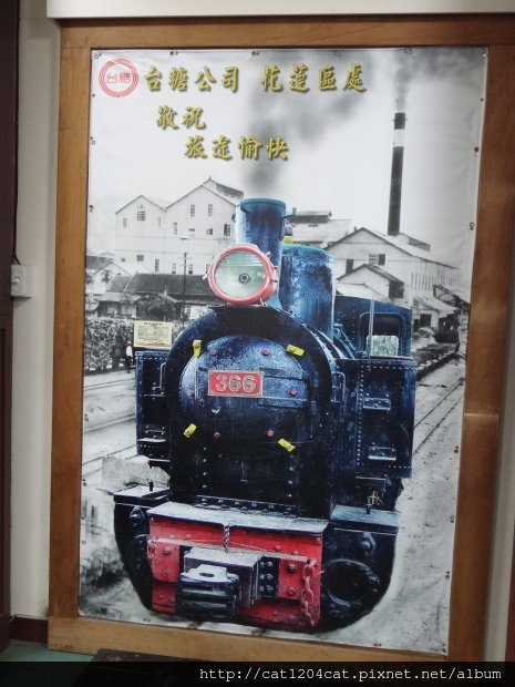 花糖18.JPG