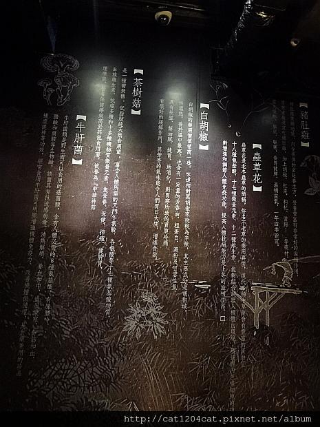 鍋濤-環境10.JPG