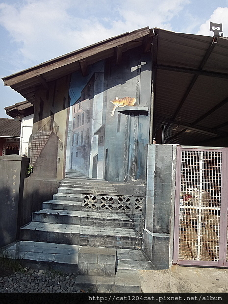 屋頂上的貓9.JPG