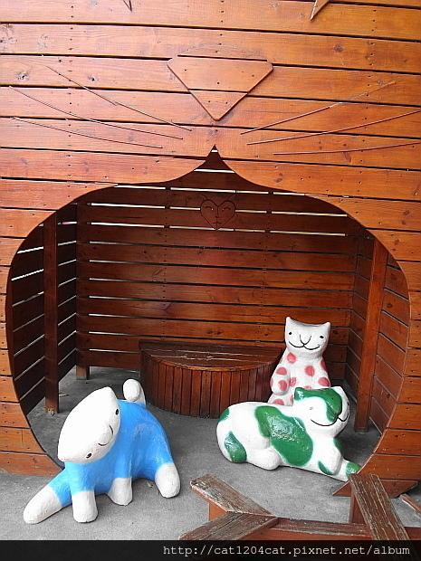 屋頂上的貓17.JPG