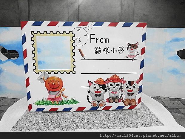 貓咪小學堂4.JPG