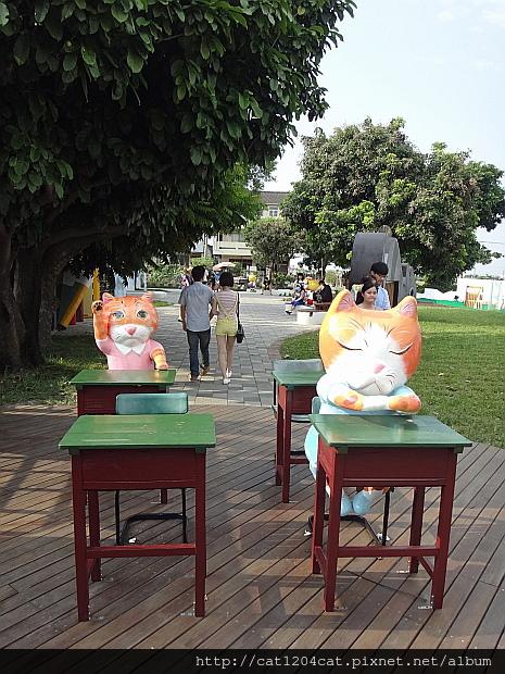 貓咪小學堂11.JPG