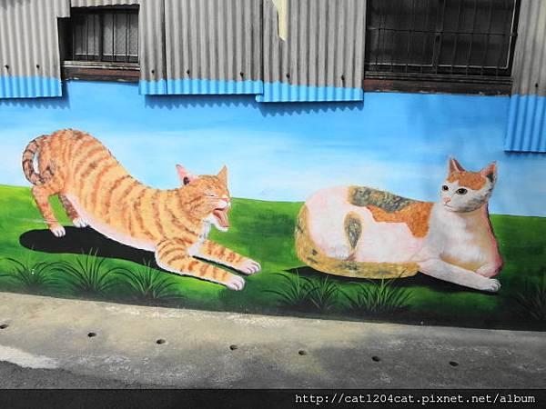 菁埔貓世界15.JPG