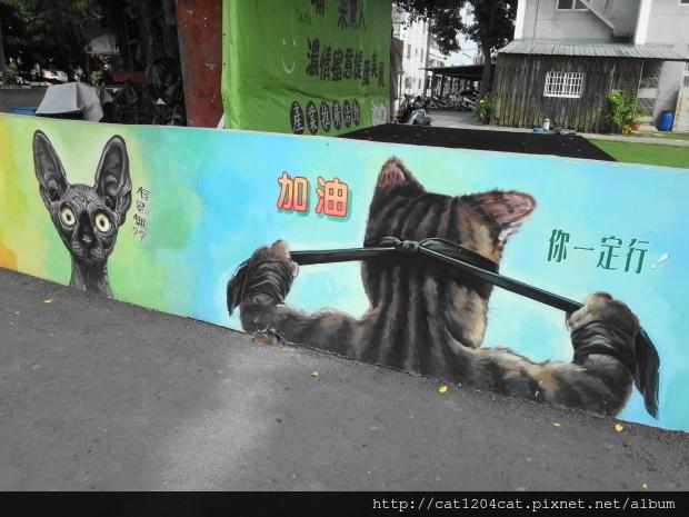菁埔貓世界50.JPG