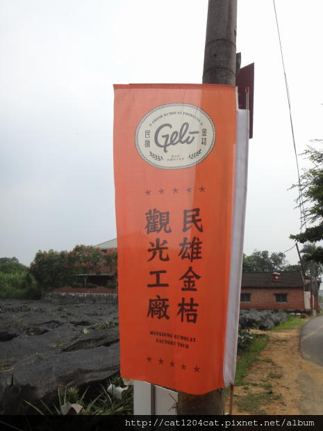 民雄金桔觀光工廠2.JPG
