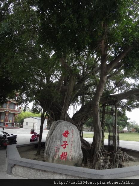佳福寺17.JPG