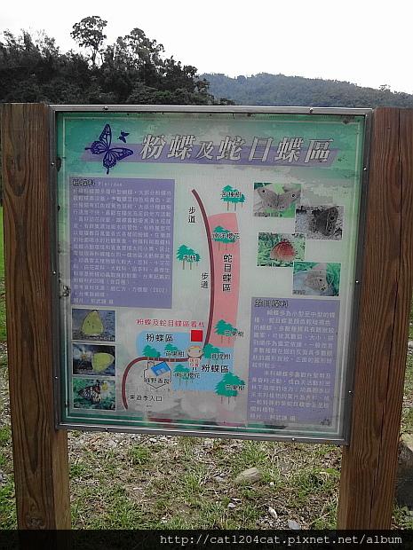 東遊季15.JPG