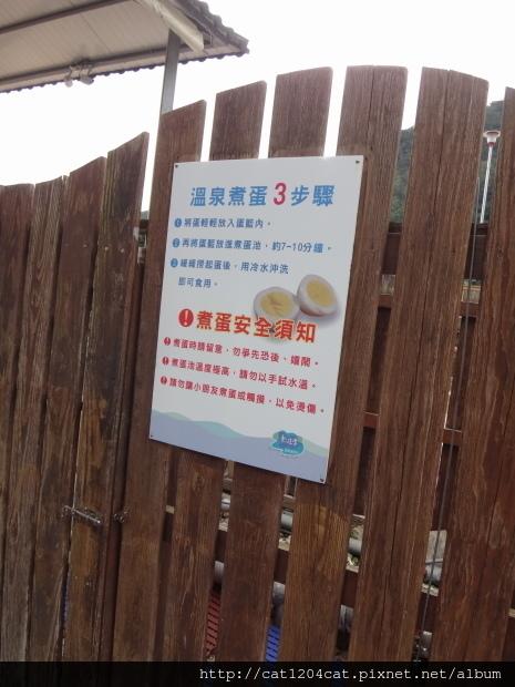 東遊季-溫泉22.JPG