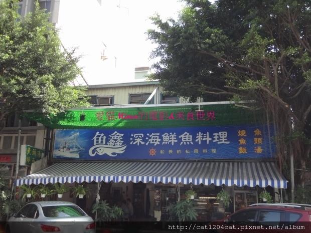 魚鑫-環境1.JPG