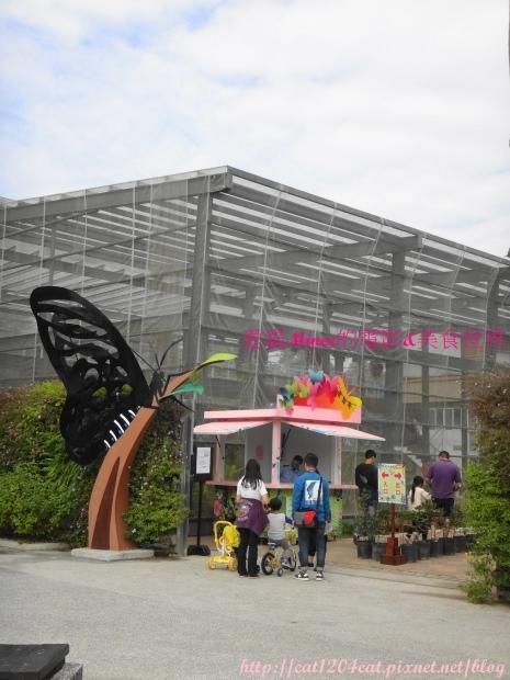 金獅湖蝴蝶園7.JPG