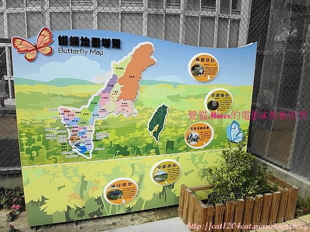 金獅湖蝴蝶園9.JPG