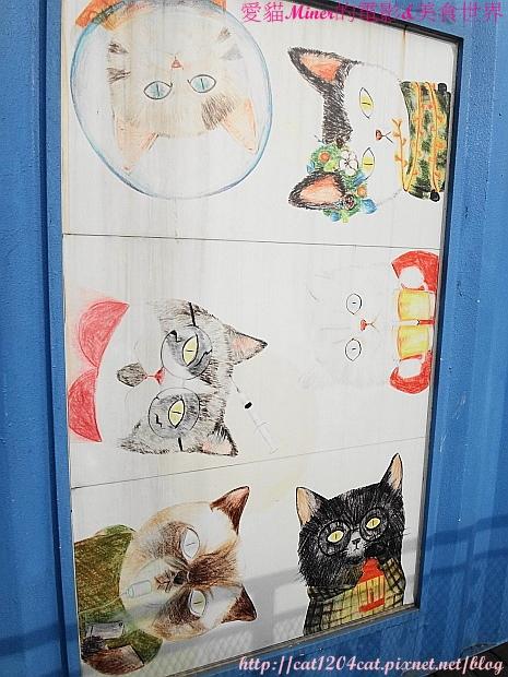 集盒-貓咪圖片2.JPG