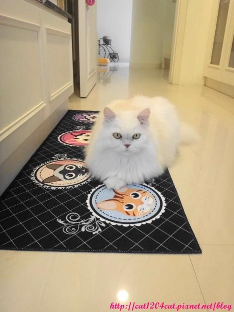 奶茶+貓咪圖案長地墊5.JPG