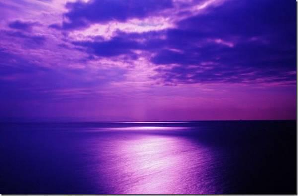 紫色愛情海