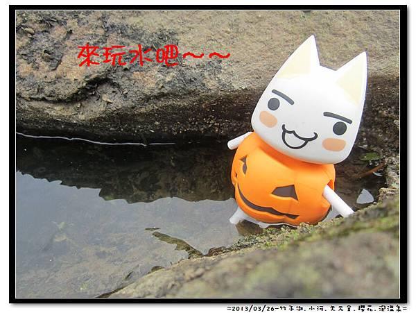 竹子湖 (7)