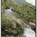 竹子湖 (6)