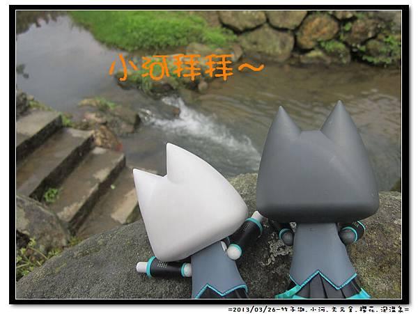 竹子湖 (14)