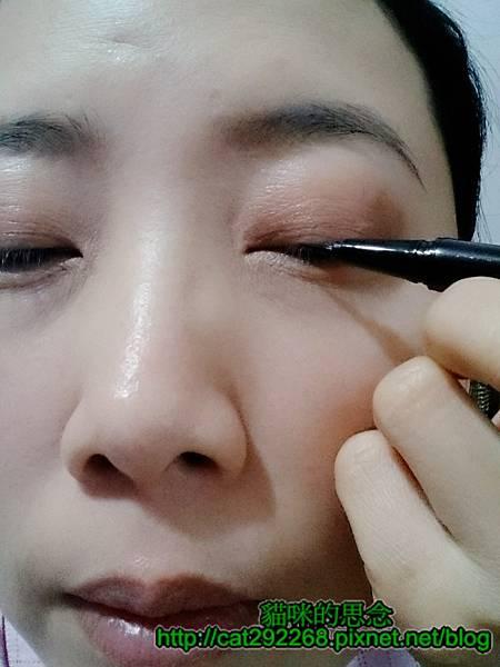 貓咪的思念易珈生技眼線液使用時10.jpg