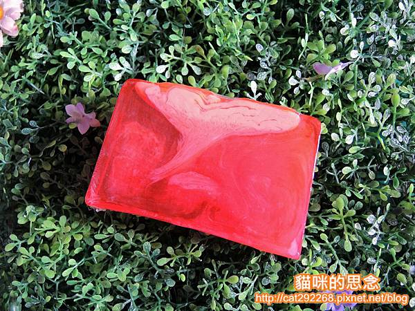 禮加手工皂DSCN2988.jpg