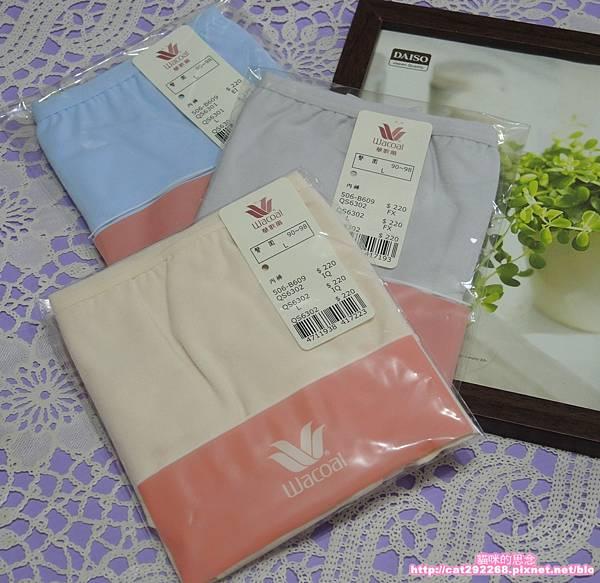 華歌爾內褲DSCN8897.jpg