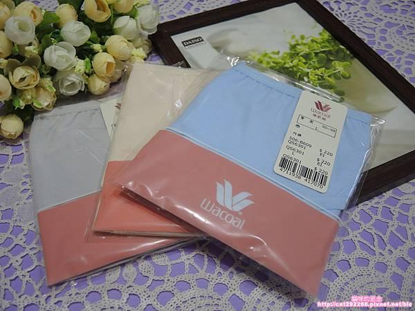 華歌爾內褲DSCN8900.jpg