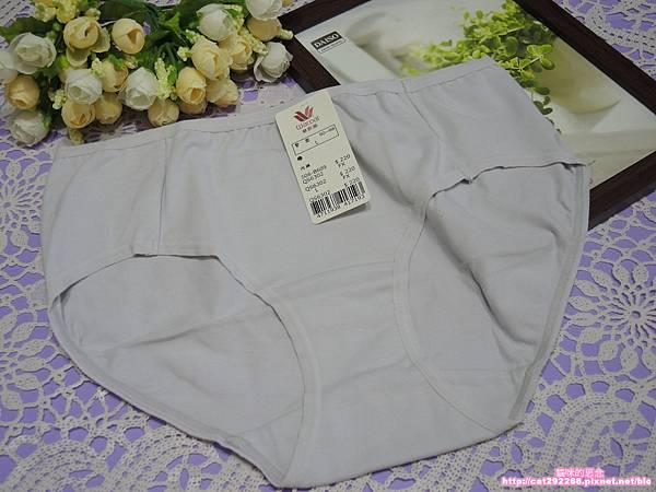 華歌爾內褲DSCN8904.jpg