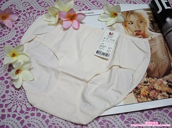 華歌爾內褲DSCN8907.jpg