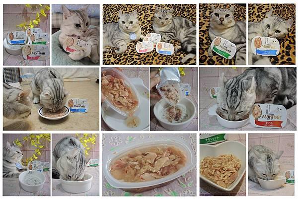 貓倍麗珍饌餐盒SCN7412.jpg