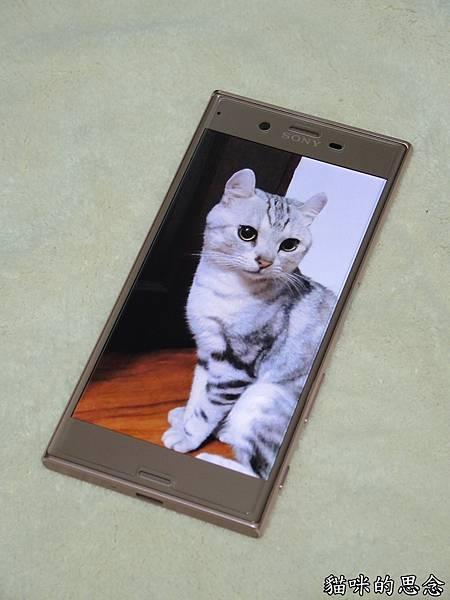 innfact N9極速充電線DSCN9121.jpg