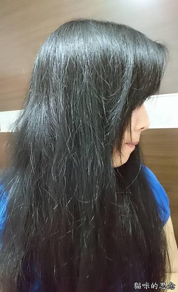 【enherb恩荷草本能量洗潤系列】三得利給頭皮最天然的呵護_20180221_043629.jpg