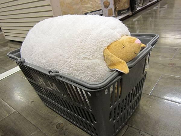 新抱枕-羊羊